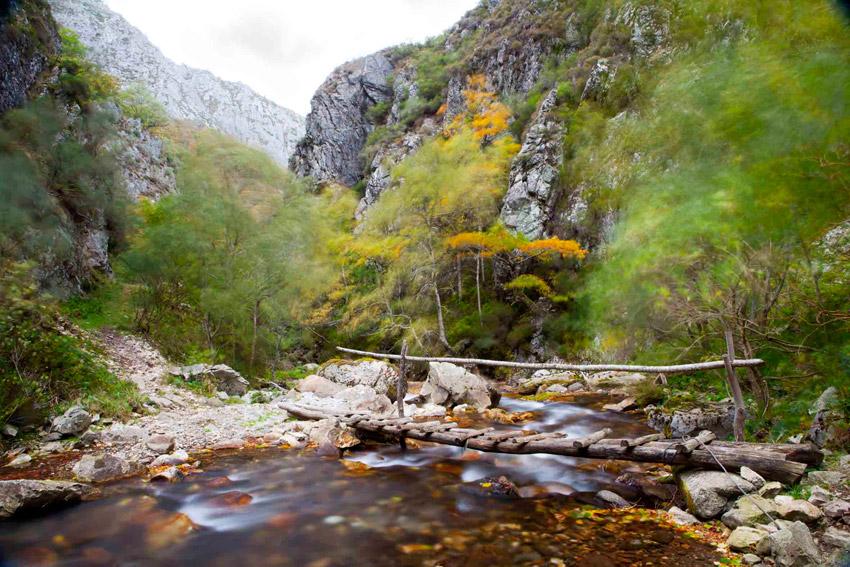 Espacios naturales: Parque Natural de redes