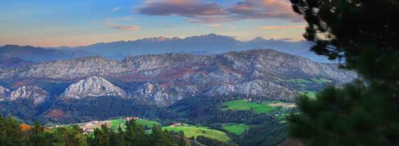 Parques naturales: picos de europa