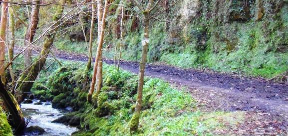 Ruta del rio Ñora